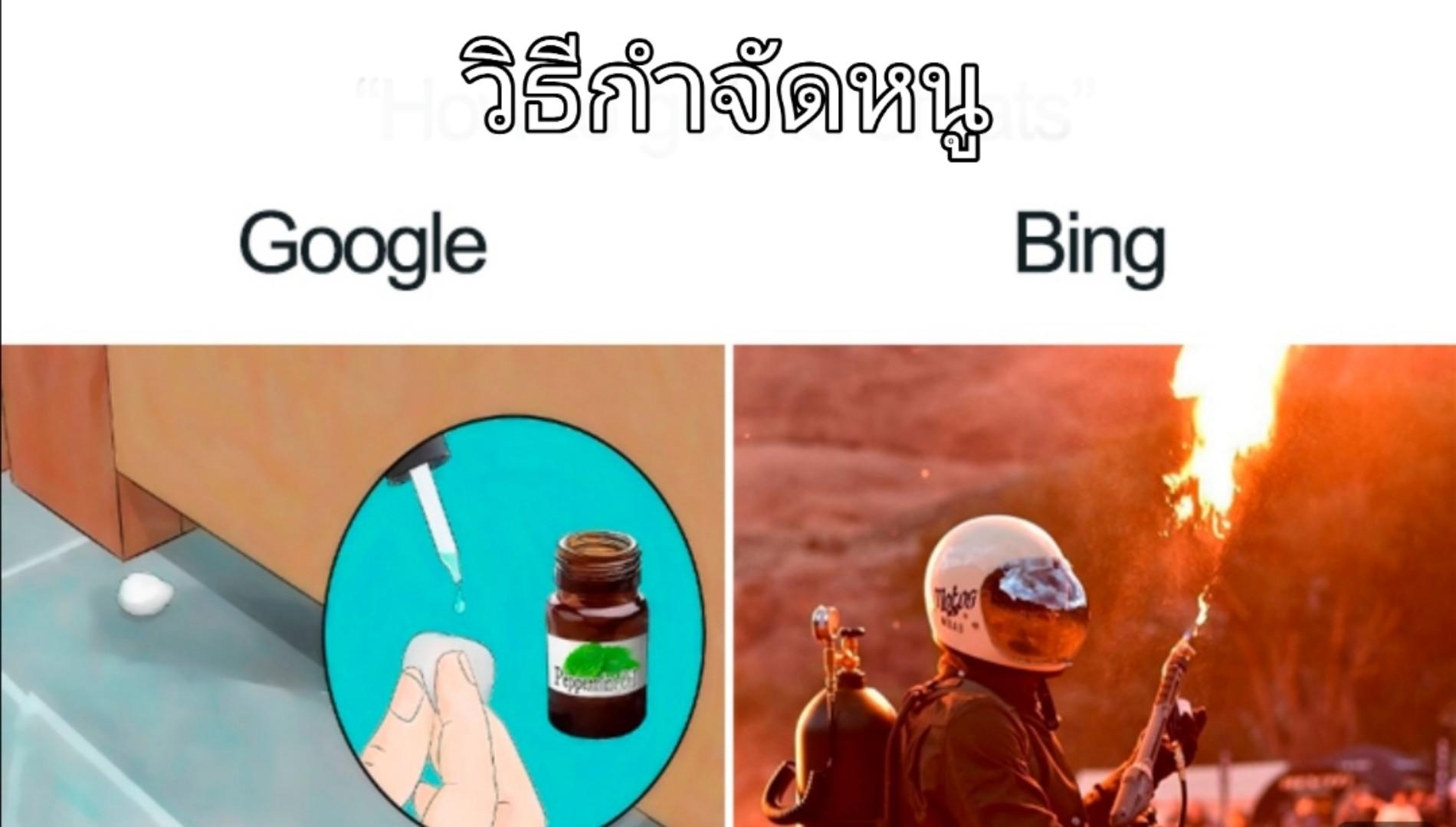 10 คำค้นหายอดฮิต ที่ให้คำตอบแตกต่างกันระหว่าง Google และ Bing จะฮาแค่ไหนไปชมกัน !!!